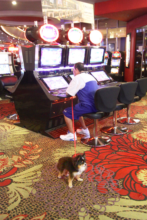 which casino in vegas has the loosest slots
